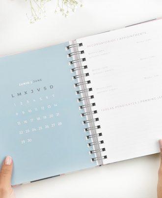planificacion agenda 2020 geometrica azul blanco rosa