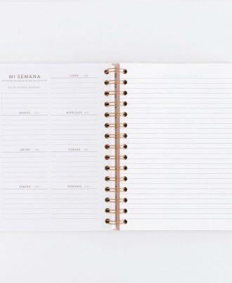 planificacion semanal agenda charuca