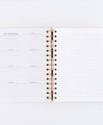 paginas interiores agenda perpetua